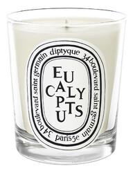Ароматическая свеча Eucalyptus Candle